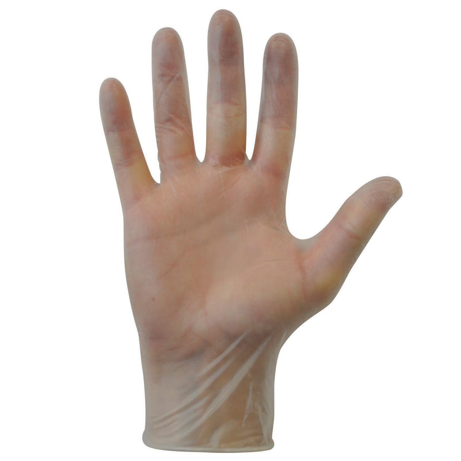 Vinyl Powder Free Gloves Extra Large Bx 100